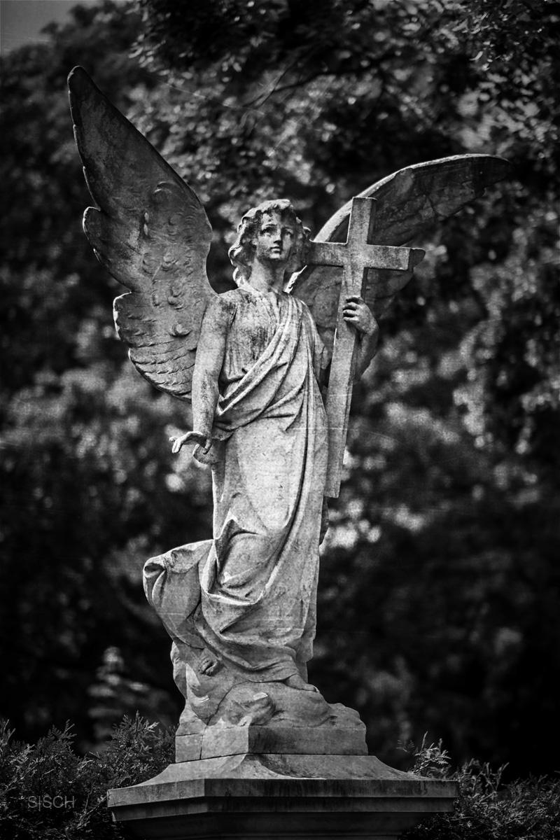 Neue Engel braucht das Land
